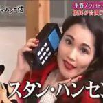 【悲報】平野ノラのネタ「しもしも」松本人志の方が面白かったw