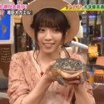 西野七瀬は日村勇紀が好き??→ヒムラが爬虫類に似てるから説